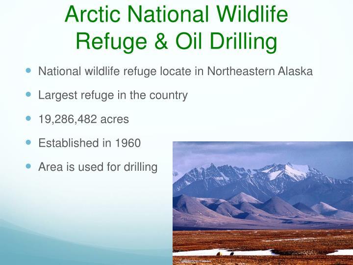 Arctic National Wildlife Refuge & Oil Drilling