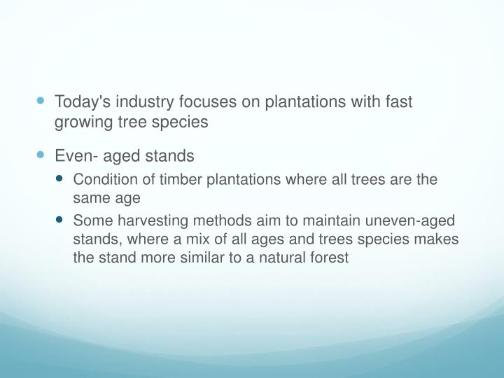Plantation forestry has grown