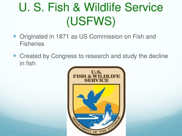 U. S. Fish & Wildlife Service (USFWS)