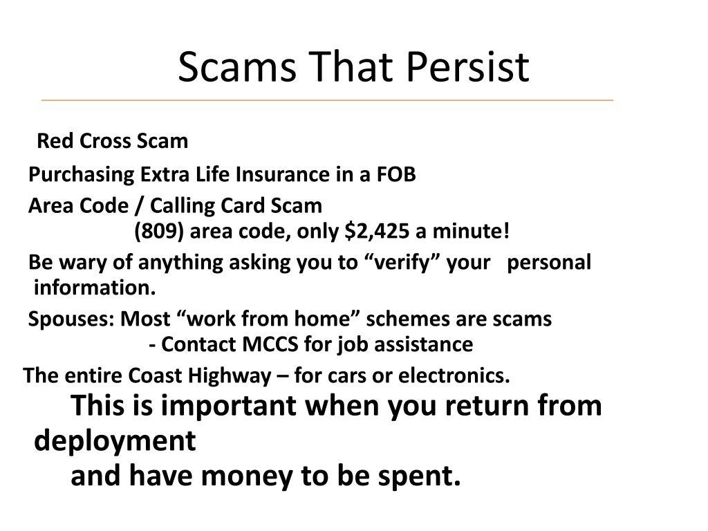Scams That Persist