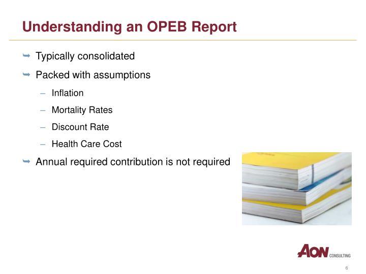Understanding an OPEB Report