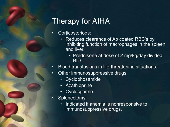 Therapy for AIHA