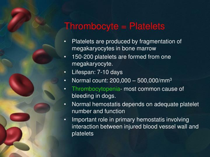Thrombocyte = Platelets