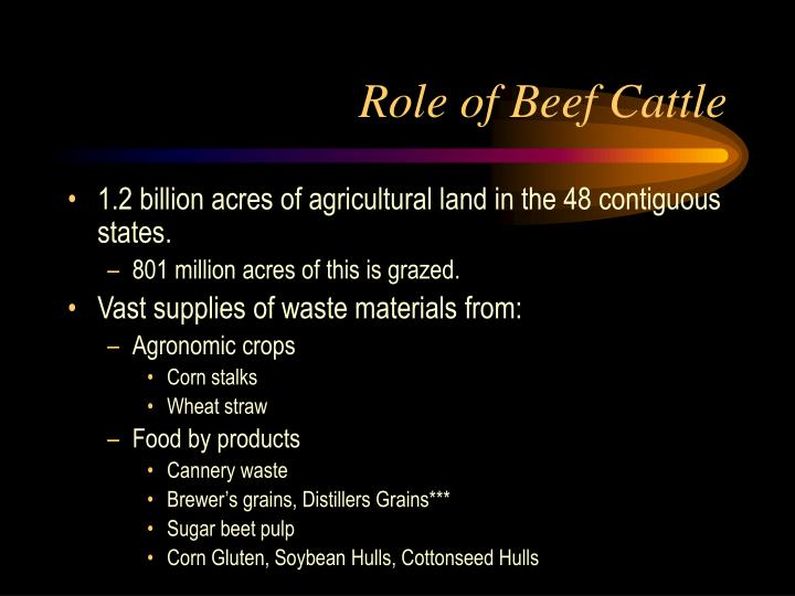Role of beef cattle2 l.jpg