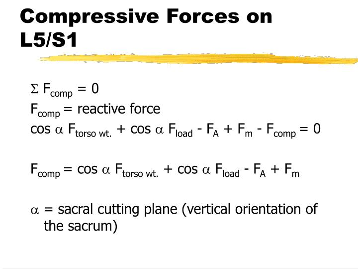 Compressive Forces on L5/S1