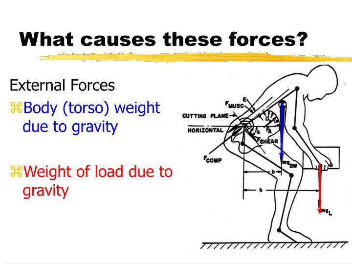 What causes these forces
