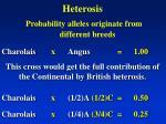 heterosis19