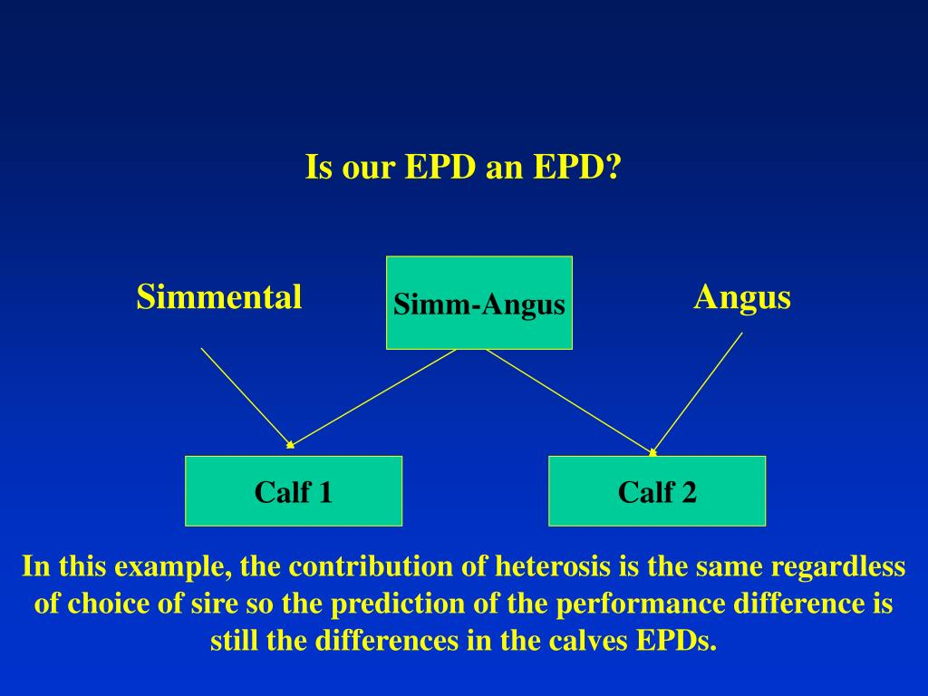 Is our EPD an EPD?