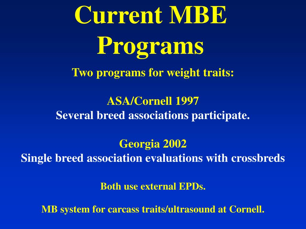 Current MBE Programs