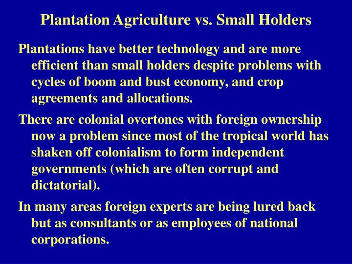 Plantation agriculture vs small holders