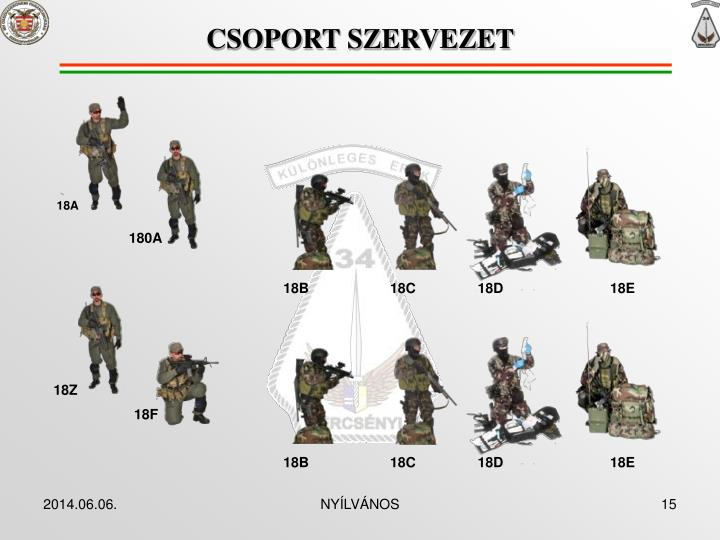 CSOPORT SZERVEZET