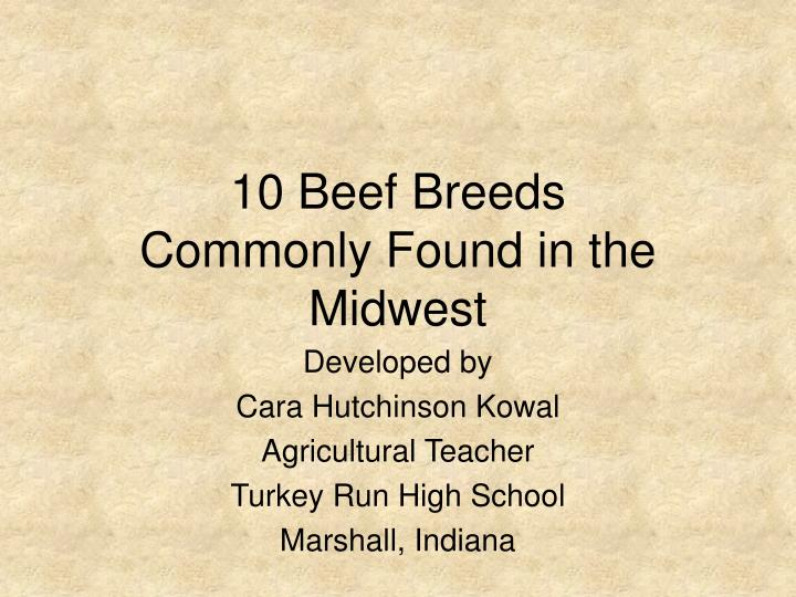 10 beef breeds commonly found in the midwest l.jpg