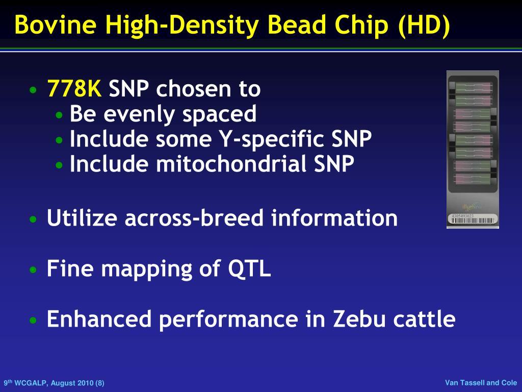Bovine High-Density Bead Chip (HD)