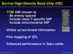 bovine high density bead chip hd
