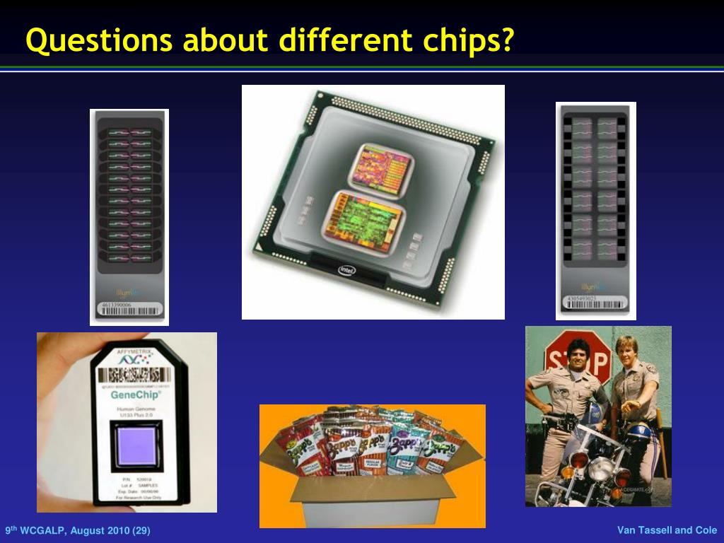 Questions about different chips?