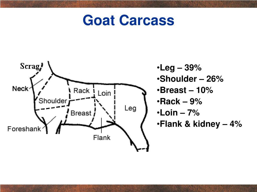 Goat Carcass