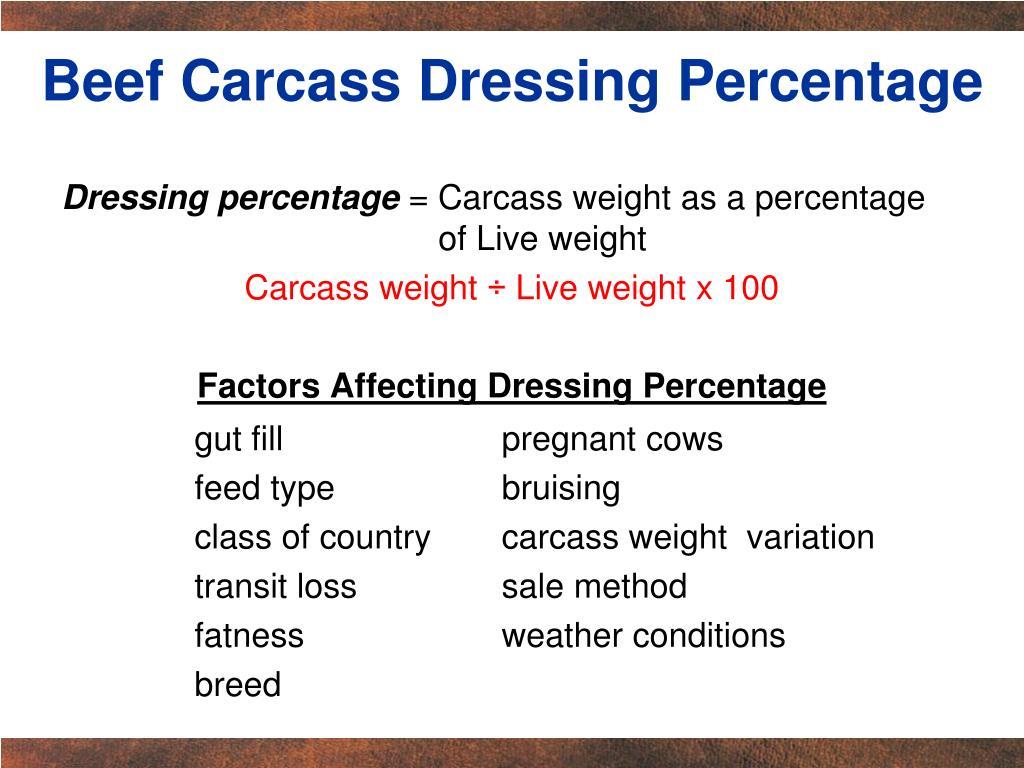 Beef Carcass Dressing Percentage