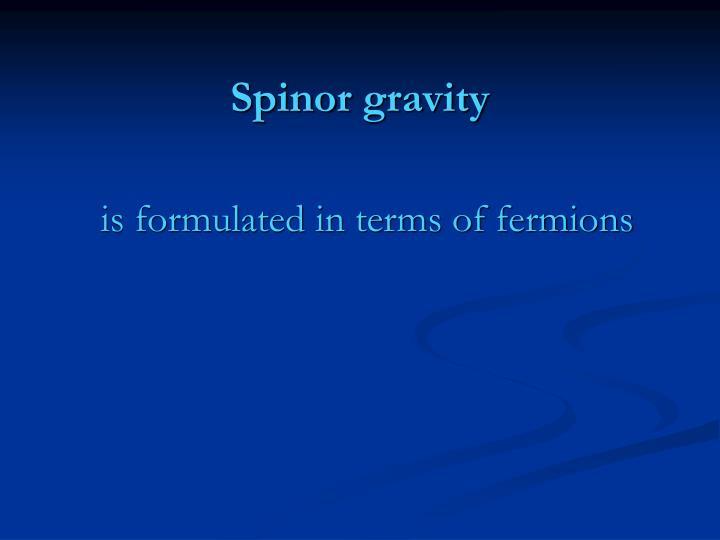 Spinor