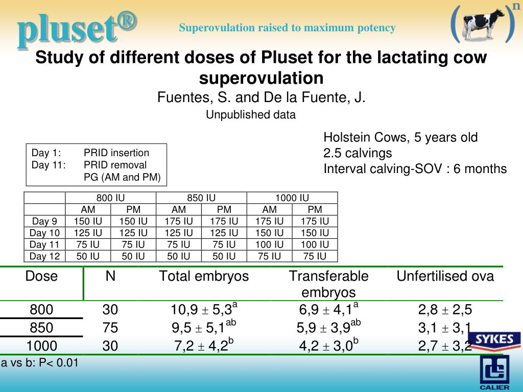 Study of different doses of Pluset for the lactating cow superovulation
