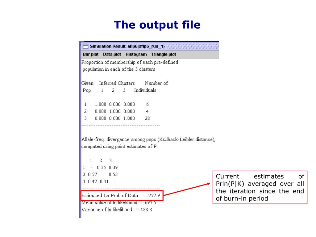 The output file