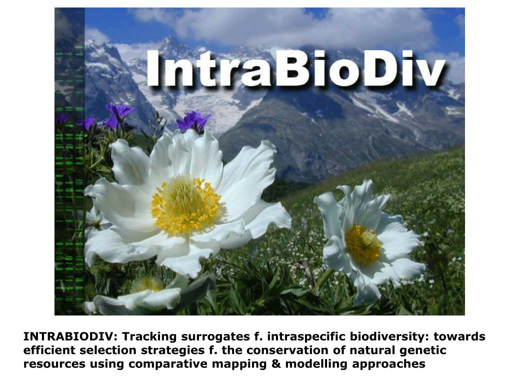 INTRABIODIV: Tracking surrogates f. intraspecific biodiversity: towards efficient selection strategies f. the conservation of natural genetic resources using comparative mapping & modelling approaches