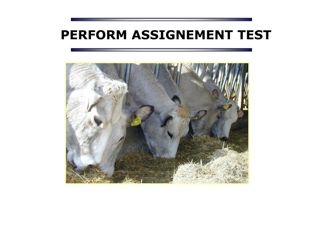 PERFORM ASSIGNEMENT TEST