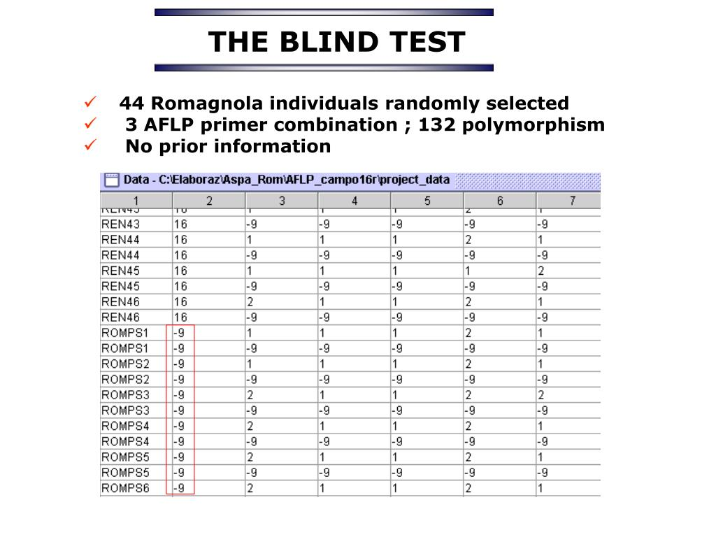 THE BLIND TEST