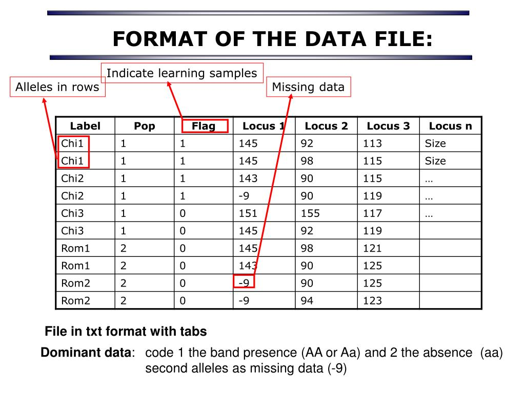 FORMAT OF THE DATA FILE: