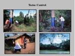 tsetse control