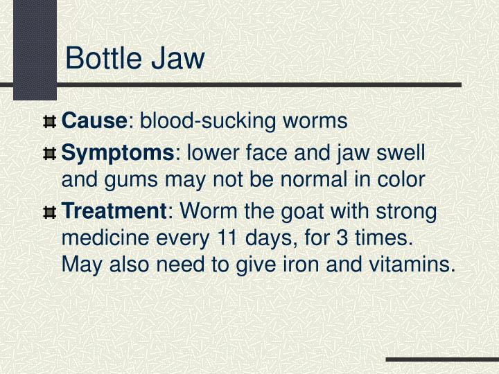 Bottle Jaw
