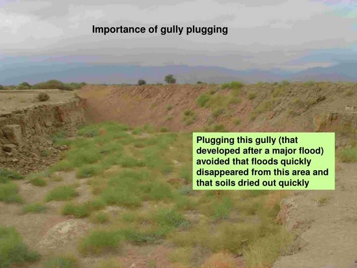 Importance of gully plugging