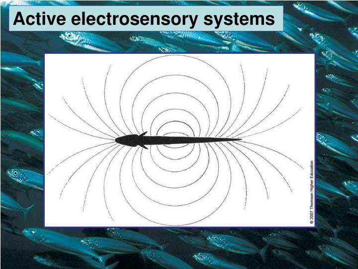 Active electrosensory systems