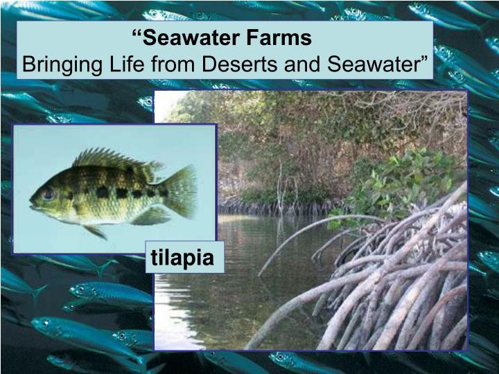 """Seawater Farms"