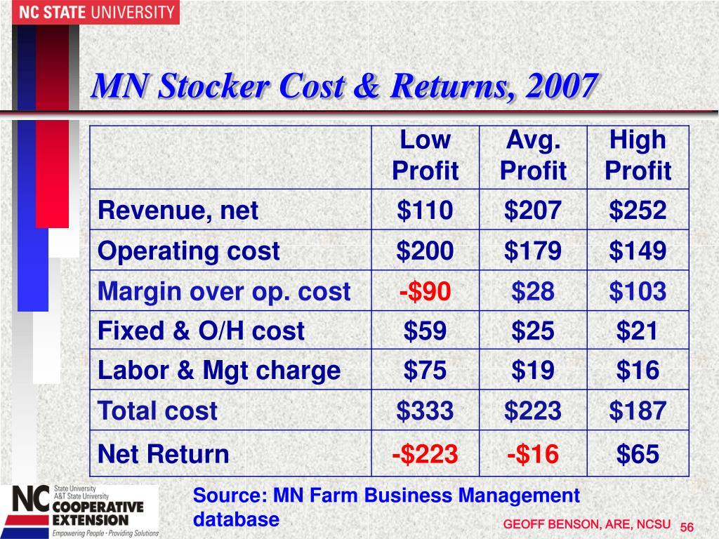 MN Stocker Cost & Returns, 2007