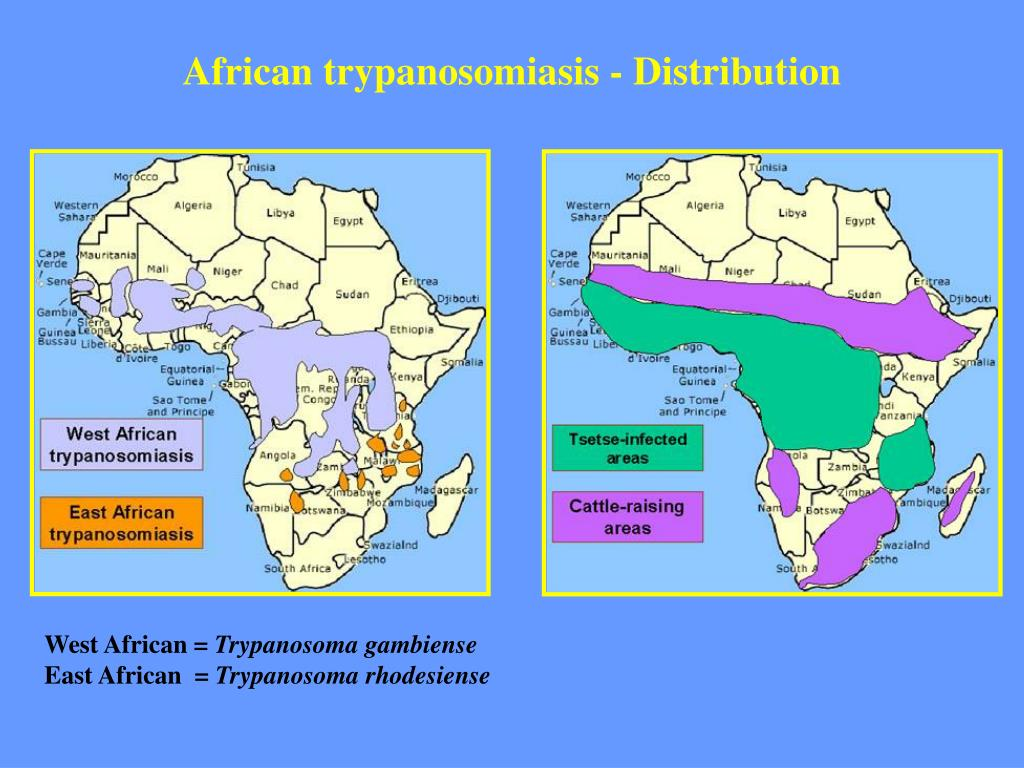 African trypanosomiasis - Distribution