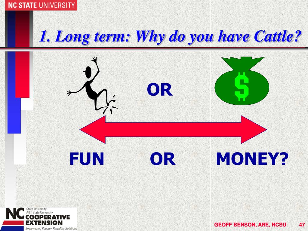 1. Long term: Why do you have Cattle?