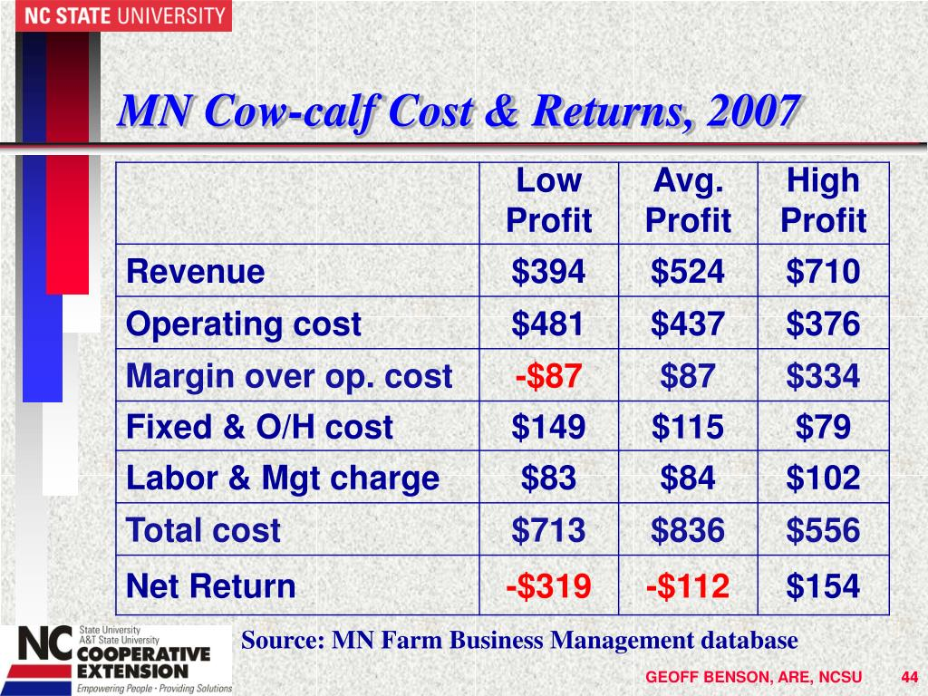 MN Cow-calf Cost & Returns, 2007