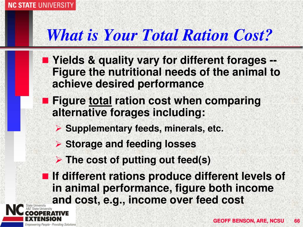 What is Your Total Ration Cost?