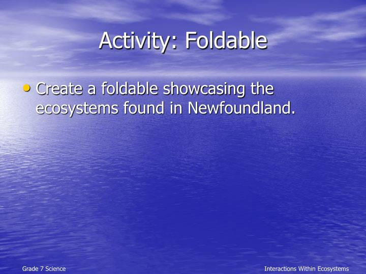 Activity: Foldable