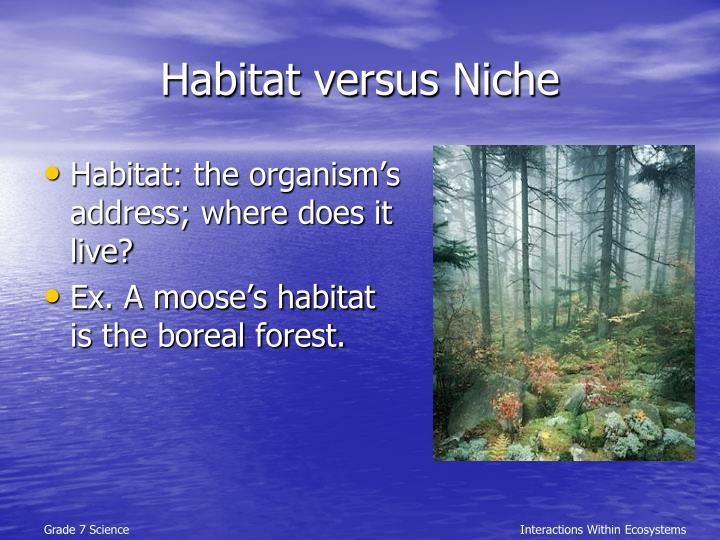 Habitat versus Niche