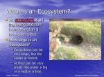 what is an ecosystem5