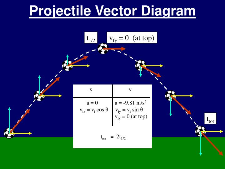 Projectile Vector Diagram