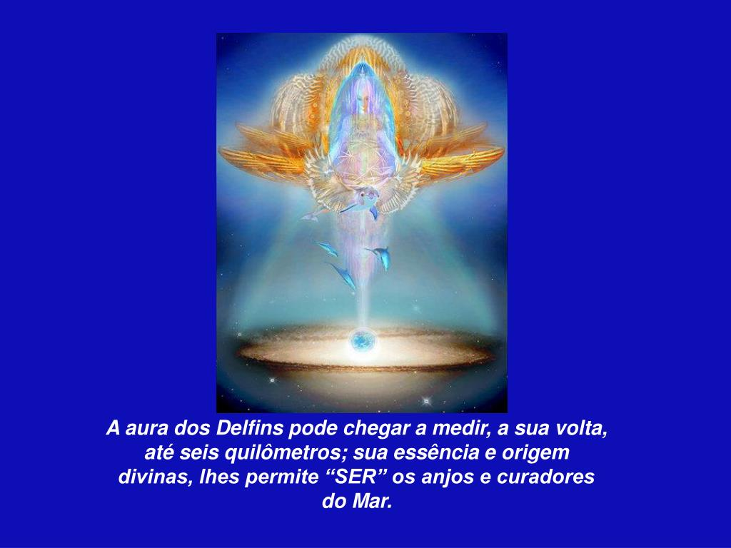 """A aura dos Delfins pode chegar a medir, a sua volta,  até seis quilômetros; sua essência e origem divinas, lhes permite """"SER"""" os anjos e curadores do Mar."""