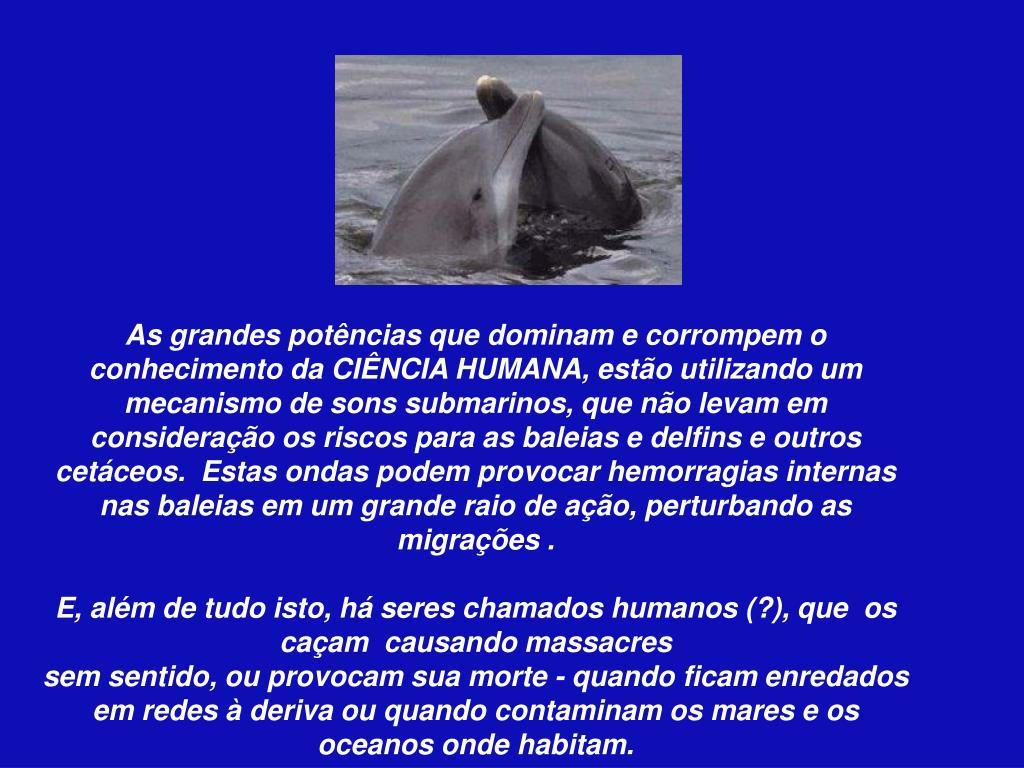 As grandes potências que dominam e corrompem o conhecimento da CIÊNCIA HUMANA, estão utilizando um mecanismo de sons submarinos, que não levam em consideração os riscos para as baleias e delfins e outros cetáceos.  Estas ondas podem provocar hemorragias internas nas baleias em um grande raio de ação, perturbando as migrações .