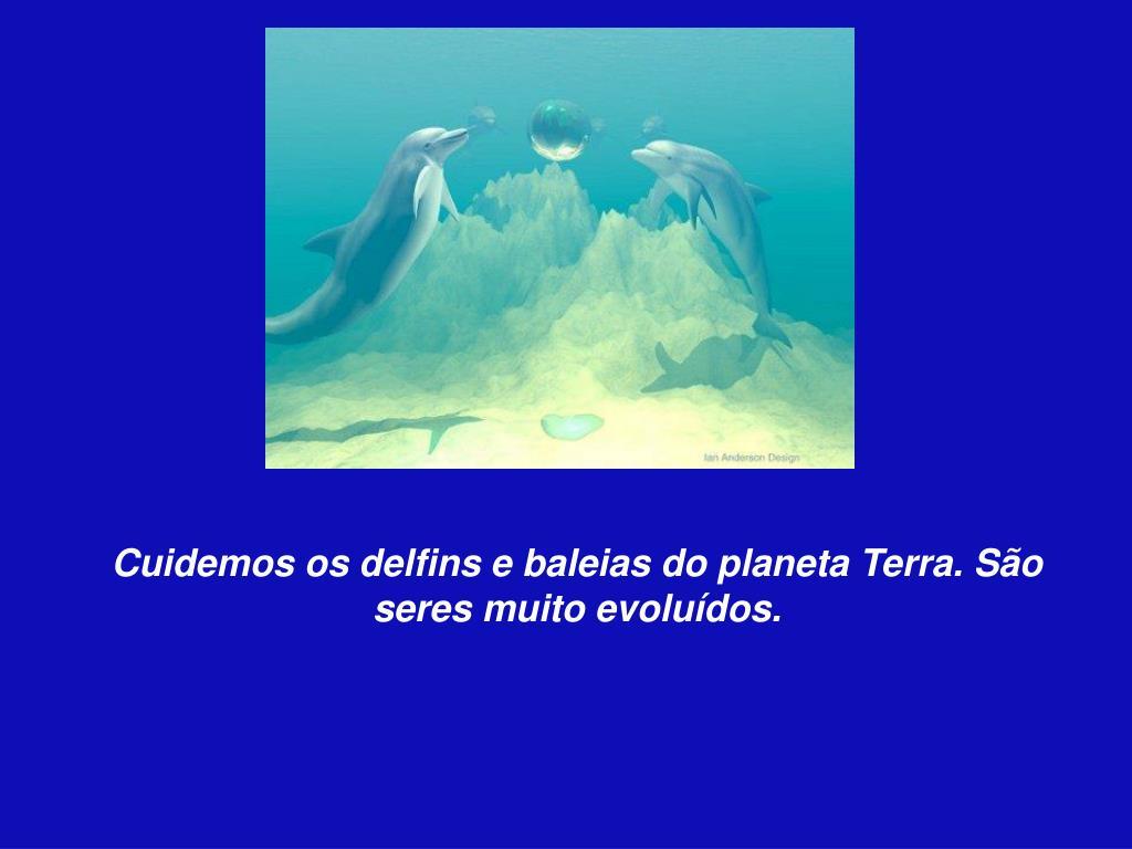 Cuidemos os delfins e baleias do planeta Terra. São seres muito evoluídos.