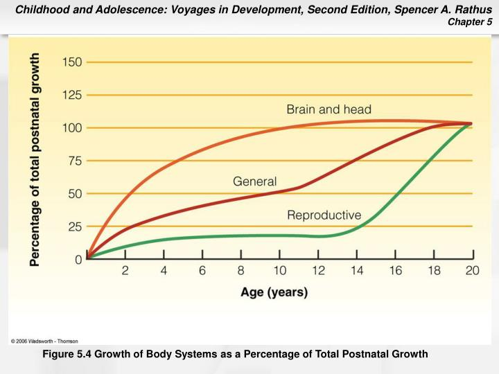 Figure 5.4 Growth of Body Systems as a Percentage of Total Postnatal Growth