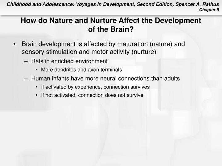 How do Nature and Nurture Affect the Development