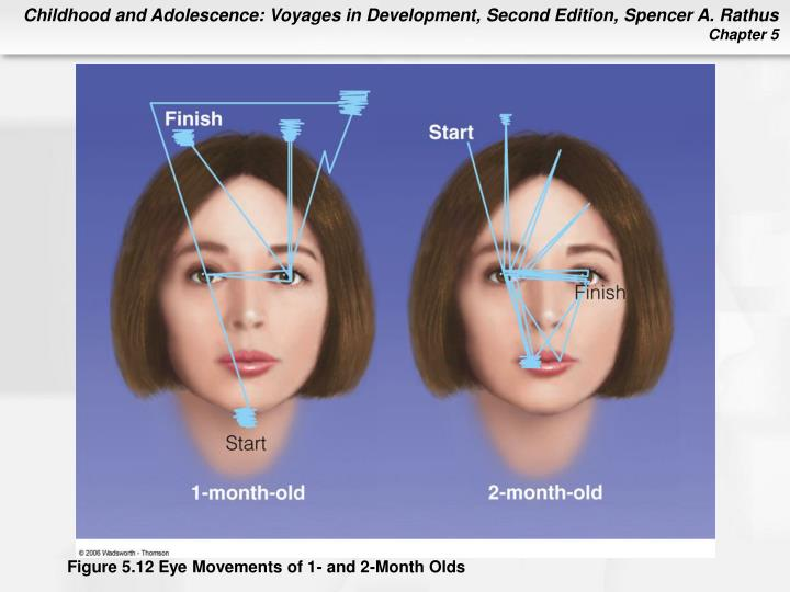 Figure 5.12 Eye Movements of 1- and 2-Month Olds