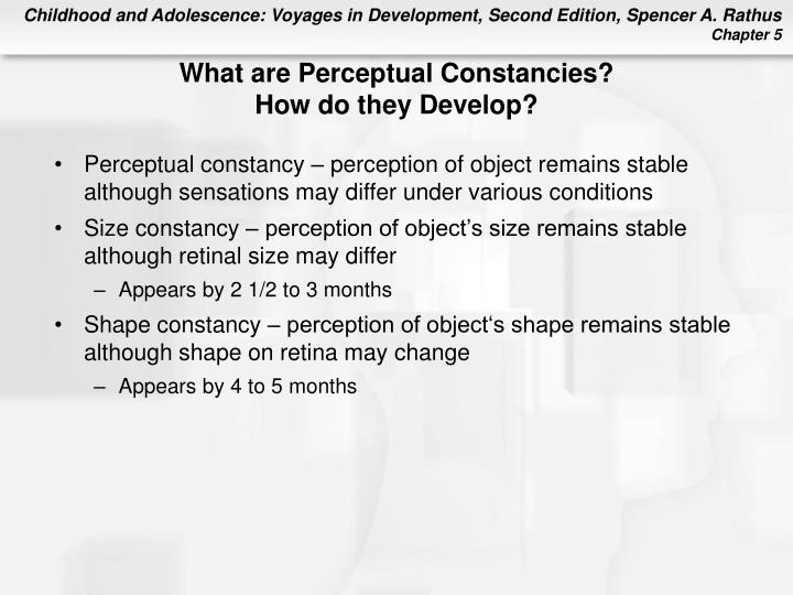 What are Perceptual Constancies?