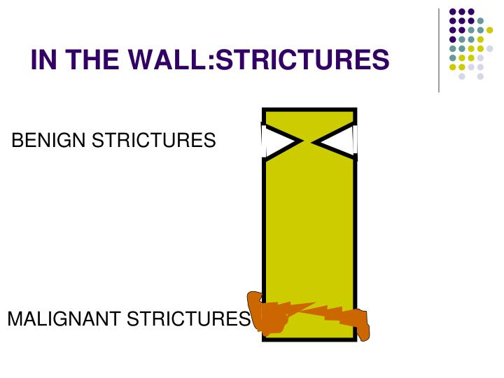 IN THE WALL:STRICTURES